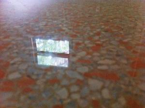 This terrazzo floor was restored in Gainesville Florida