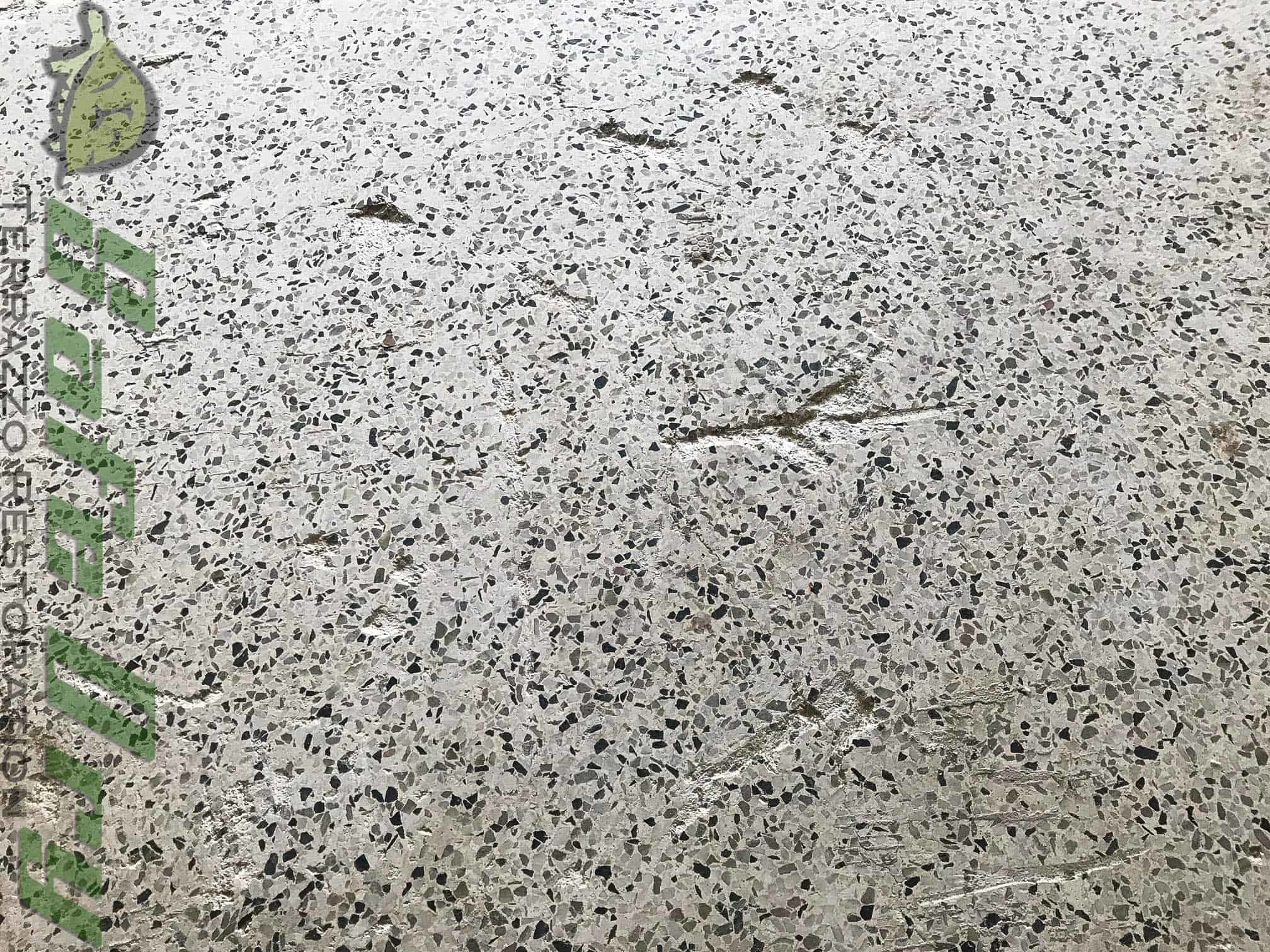 Tile Improperly Removed From Terrazzo Terrazzo Restoration
