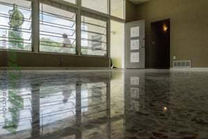 Terrazzo Flooring by SafeDry