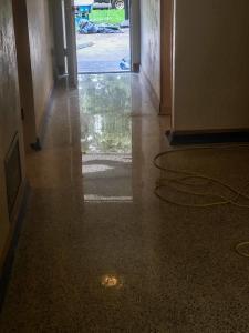 Terrazzo Flooring restored by SafeDry
