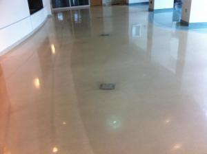 This terrazzo floor shows the floor after one cleaning pass