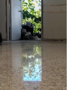 Terrazzo restoration done by SafeDry
