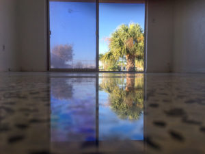 New Port Richey, Florida Terrazzo restoration by SafeDry