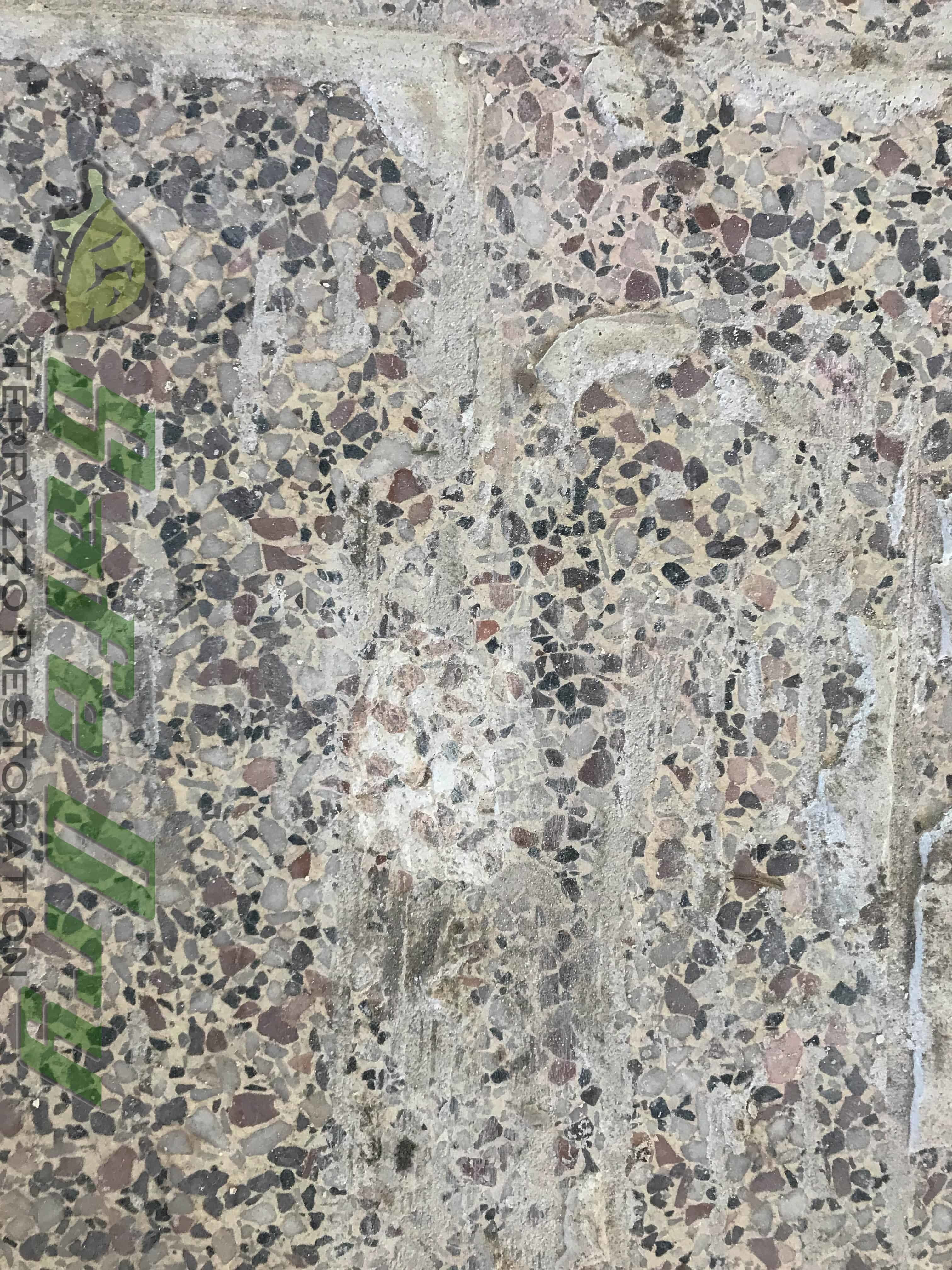 floor terrazzco precast brand tiles products terrazzo school ridge floors tiling elementary tile flooring green