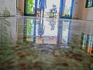 Diamond polished terrazzo Gainesville