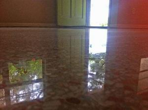 Terrazzo Restoration Gainesville done with all dry polishing