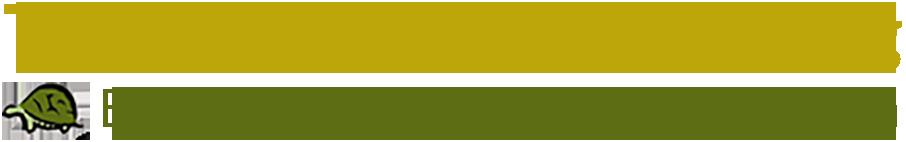 Terrazzo Restoration Blog - A Division of Safedry