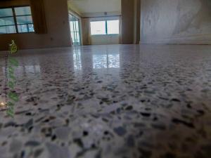 Dry Diamond Polished Terrazzo